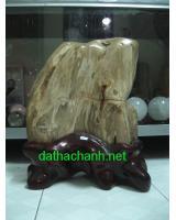 Khối gỗ hóa thạch GHT43