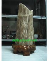 Khối gỗ hóa thạch GHT73