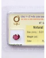 viên đá garnet ngọc hồng lựu GARNET1.08